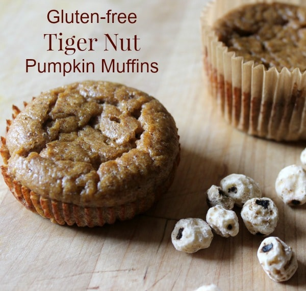 75+ Paleo Muffins - Healy Eats Real
